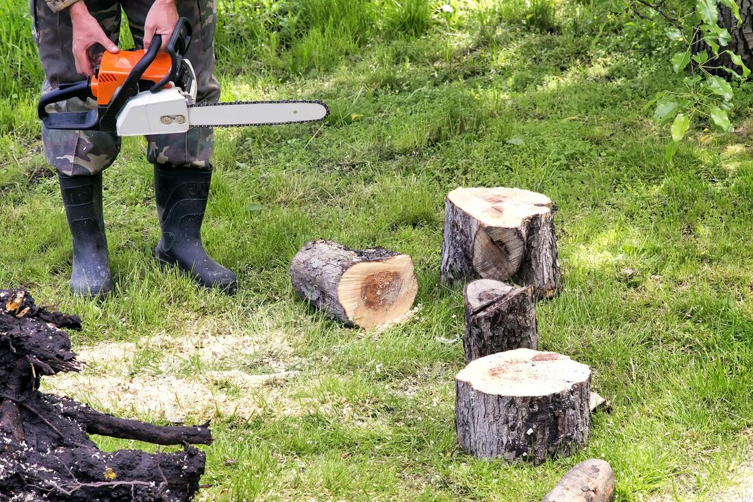 Tree Service-Denton TX Professional Landscapers & Outdoor Living Designs-We offer Landscape Design, Outdoor Patios & Pergolas, Outdoor Living Spaces, Stonescapes, Residential & Commercial Landscaping, Irrigation Installation & Repairs, Drainage Systems, Landscape Lighting, Outdoor Living Spaces, Tree Service, Lawn Service, and more.